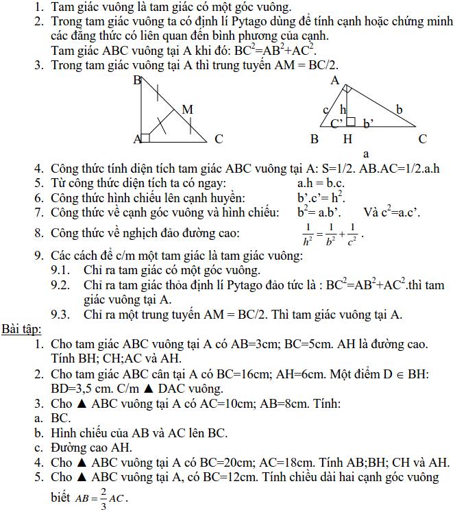 Ôn tập Hệ thức lượng trong tam giác vuông - Hình học 9