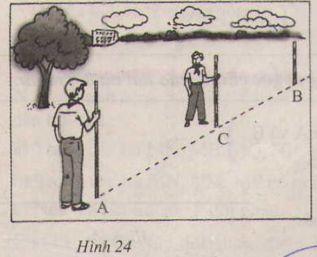 Thực hành: Trồng cây thẳng hàng