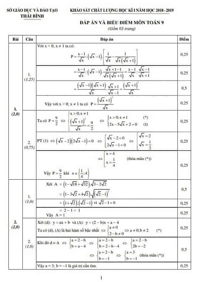 Đề kiểm tra học kì 1 môn Toán 9 tỉnh Thái Bình 2018-2019 có đáp án-1